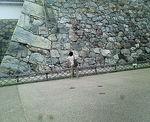 石垣とガイド